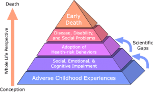 Consequences of adverse childhood experiences